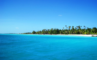 Picture of Beach in Tikehau