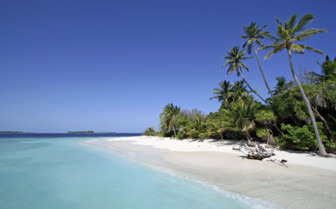 Picture of beach and palm trees Northern Atolls