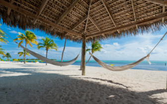 Picture of hammocks on beach Cayman Islands