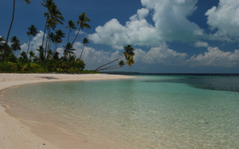 Picture of Beach at Wakatobi