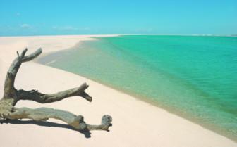 Picture of Nyati deserted beach