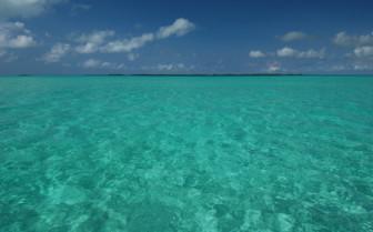 Picture of emerald lagoon in Tanzania