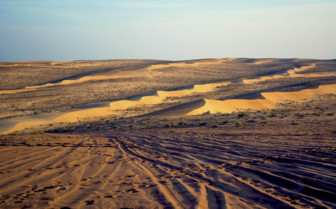 Tracks in the Desert at Wahiba Sands