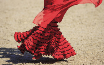 A Flamenco Dancer in Red