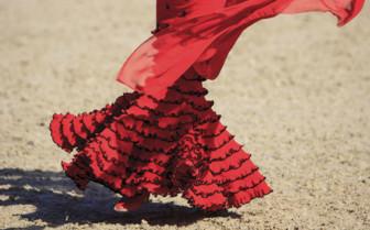 A Flamenco Dancer in Red