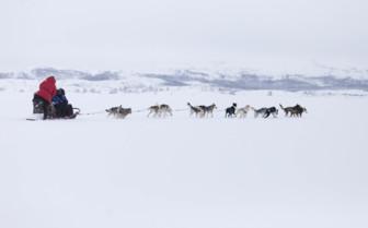 Sledging Across the Snow in Sweden