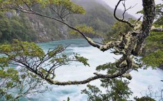 Petrohue in Chile