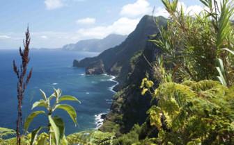 Clifftop coastline view