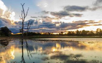 Reflective Lake