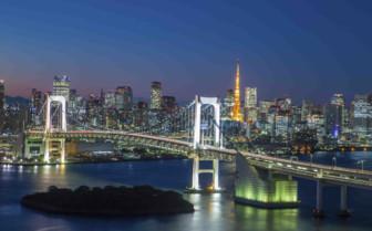 Tokyo Bridge Lit at Night