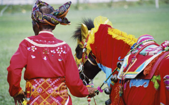 Traditional Figure with Decorated Donkey