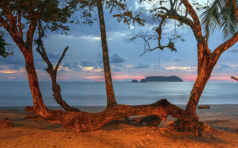 Manuel Antonio National Park and Central Pacific Coast