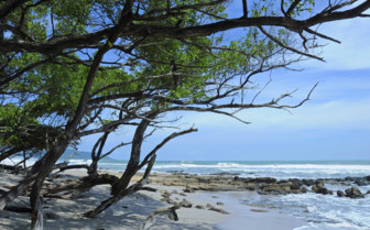 Guanacaste coastline and blue skies