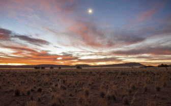 Dusk in the Namib desert