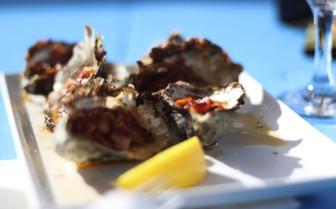 Fresh Oysters, Tasmania