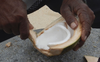 Coconut carving, Fiji