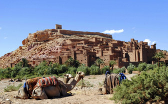Camels in front of Ait Ben Haddou