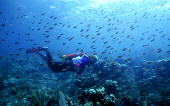 Deep sea diver swimming with fish