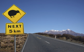 New Zealand Road Trips
