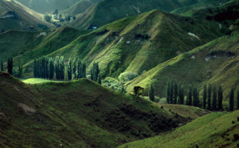 Northern Island Landscape