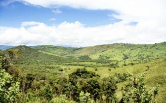 Malawi Landscape
