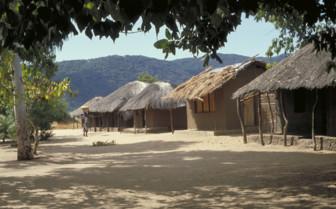 Malawi Village Huts
