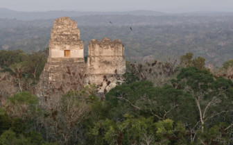 Tombs in Tikal National Park