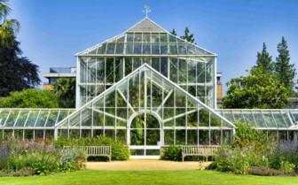 Greenhouse, Cambridge