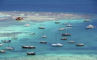 Boats in the Harbor in St George, Grenada