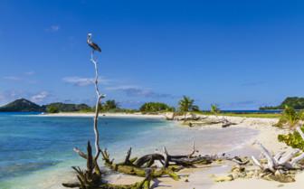Isolated Beach in Grenada