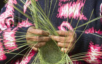 Tarahuma woman weaving, Mexico