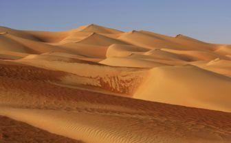 Desert Sand Dunes, Abu Dhabi