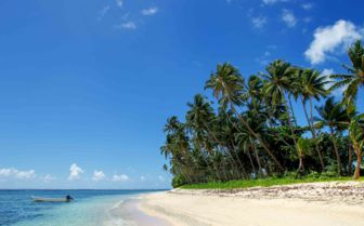 Image of a beach on Taveuni