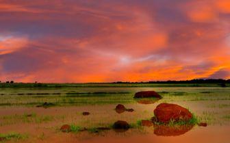 Sudd Swamps, Sudan