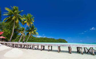 Tropical pacific island