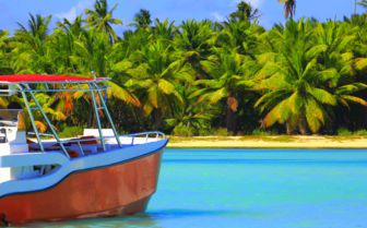 Tropical paradise relax image