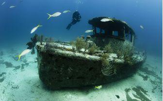 Ship wreck, Bahamas