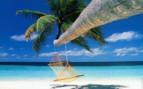Picture of Beach with hammock at Bora Bora