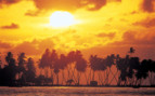 Picture of sun setting behind palms Northern Atolls