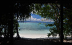 Picture of Secluded beach in Raja Ampat