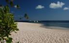 Picture of Wakatobi beach