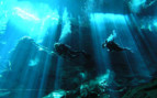 Picture of Cenote diving in Mexico