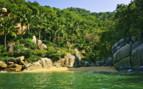 Tropical Pacific Coast, Mexico