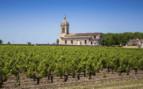 Church by vineyards