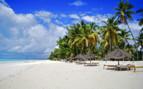 Tanzanian Coast Beach