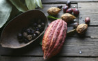 Cocoa Nutmeg in Grenada