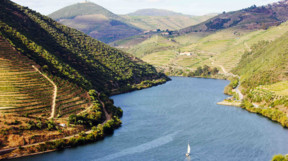 Sailing on the Douro River
