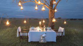 Sabora Camp Bush Dinner