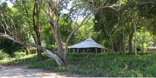 A tent in the jungle in Moyo Island