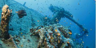 Thistlegorm, Nothern red sea, Egypt